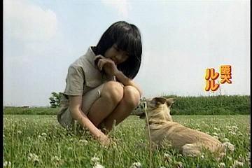 福田麻由子ちゃんの愛犬
