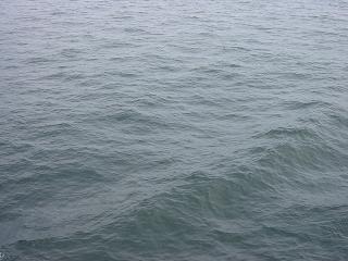 東京湾の海